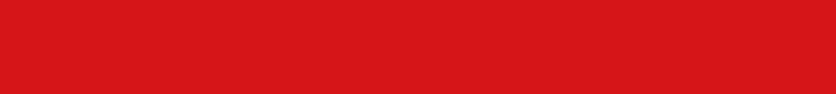 Everflon Logo